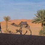 Herzreisen - Mit Berbern leben_5